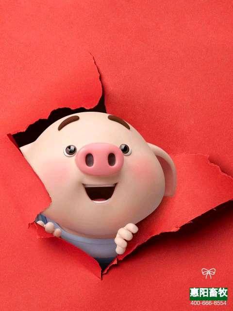 2019~猪事吉祥!送一波高清手机屏保图